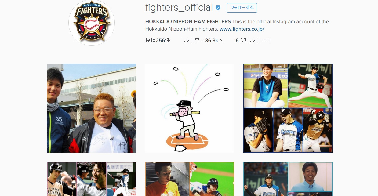 fighter_official